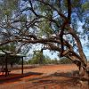 Gundabooka National Park, near Bourke